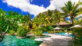 Tropische Luxusfeiertage Schwimmenpool und entspannendes Badekurortgebiet, lizenzfreie stockfotos