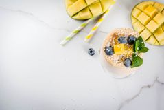 Tropische mango smoothie Royalty-vrije Stock Foto's