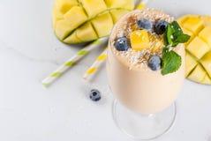 Tropische mango smoothie Royalty-vrije Stock Afbeelding