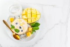 Tropische mango smoothie Stock Afbeelding