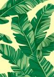 Tropische Musterbanane verlässt auf hellgelbem Hintergrund, flacher Linie Vektor und Illustration vektor abbildung