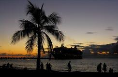 Tropische Nacht stockfotos