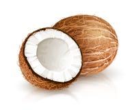 Tropische Nussfrucht der Kokosnuss mit Schnitt Illustrations-Weißhintergrund des Vektors Eps10 Stockfotos