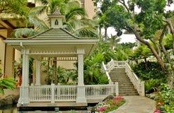 Tropische Oase Stockbilder