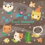 Tropische Onderwatermeerminkatten stock illustratie