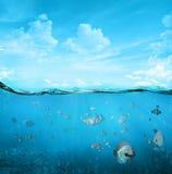 Tropische onderwaterscène Stock Afbeelding