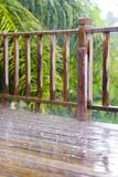 Tropische Onweersbui Royalty-vrije Stock Afbeelding