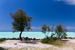 Tropische overzees in de de zomertijd Stock Foto