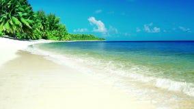 Tropische overzeese oceaangolvenbeweging in zonnig daglicht op strand, met overzees landeiland stock video