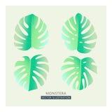 Tropische Palmblätter des Vektors Aufgeteilte Blattzeichnung in den zarten Pastellfarben, Weinleseart Stockfotos