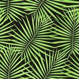 Tropische Palmblätter kopieren nahtlosen Hintergrund Modisches Blumenlaubmuster der exotischen Mode Nahtlose schöne Botanikpalme lizenzfreie stockfotos