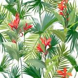 Tropische Palmbladen en Bloemen, Naadloze Bloemen het Patroonachtergrond van Wildernisbladeren royalty-vrije illustratie