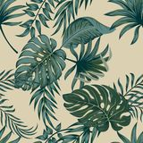 Tropische Palmbladen, Naadloze Vector Bloemen het Patroonachtergrond van Wildernisbladeren royalty-vrije illustratie