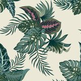 Tropische Palmbladen, Naadloze Vector Bloemen het Patroonachtergrond van Wildernisbladeren vector illustratie