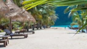 Tropische palmen die zich in een lichte wind op zandig strand bewegen, sunbeds, de lange toerist van staartboten op vage achtergr stock video