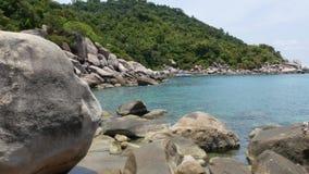 Tropische palmen en stenen op klein strand Vele groene exotische palmen die op rotsachtige kust dichtbij kalme blauwe overzees in stock footage