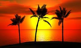 Tropische palmen tegen de hemel royalty-vrije illustratie