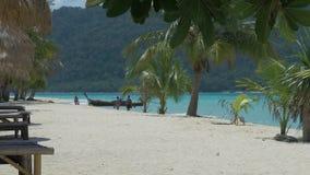Tropische palmen zich in een lichte wind op zandig strand bewegen, slingerende lange staartboten in blauw oceaanwater en verloren stock footage
