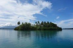 Tropische Palmeninsel des weißen Sandes Stockbild