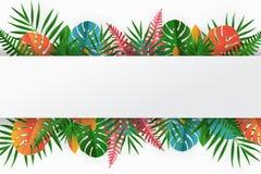 Tropische Papierpalme, monstera verlässt Rahmen Sommer-tropisches Blatt lizenzfreie abbildung
