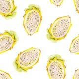 Tropische patroon van de gouache het naadloze zomer met gele pitaya vector illustratie