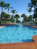 Tropische Pool Royalty-vrije Stock Afbeeldingen