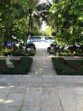 Tropische Pool Stock Afbeeldingen