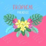 Tropische prentbriefkaar De zomerachtergrond met frangipani, hibiscus en palmbladen Stock Foto