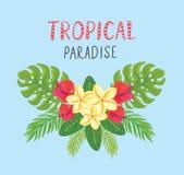 Tropische prentbriefkaar De zomerachtergrond met frangipani, hibiscus en palmbladen Stock Foto's