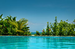 Tropische privé pool Stock Foto