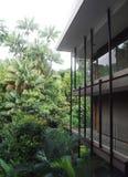 Tropische Rücksortierung im Dschungel Stockfotografie