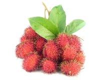 Tropische Rambutan-Vruchten Royalty-vrije Stock Afbeelding