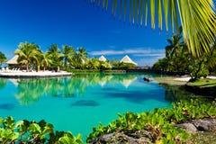 Tropische Rücksortierung mit einer grünen Lagune und Palmen Stockfotos