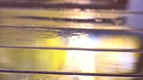 Tropische regen Dalingen van een regendaling op een houten vloer Slow-motion schot stock footage