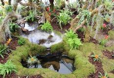 Tropische Regenwaldgartenanzeige Southport-Show Lizenzfreie Stockbilder