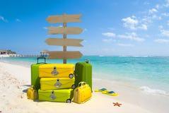 Tropische reis Stock Afbeelding