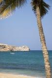 Tropische rondvaart Stock Foto's