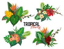 Tropische Sammlung des Vektors mit exotischen Blumen, Blättern und Anlagen stock abbildung