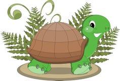 Tropische Schildpad met varen Royalty-vrije Stock Foto's