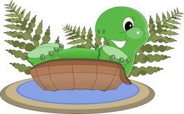 Tropische Schildpad in water Stock Afbeeldingen