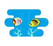 Tropische Schmetterlingsfische auf blauem Hintergrund lizenzfreie abbildung