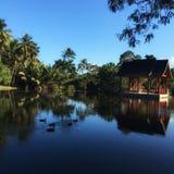 Tropische See-Seite Lizenzfreie Stockbilder