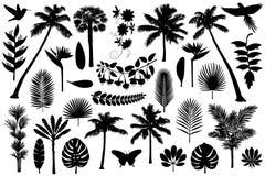 Tropische Silhouetinzameling stock illustratie