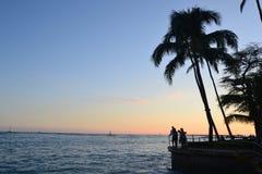 Tropische sillhouette royalty-vrije stock afbeelding