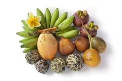 Tropische sortierte Frucht von Bali Stockfotografie