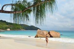 Tropische Strände, Seychellen-Inseln lizenzfreie stockfotografie