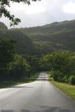 Tropische Straße des Morgens Stockfotografie