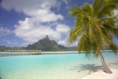 Tropische strand & lagune, Bora Bora, Franse Polynesia Royalty-vrije Stock Afbeeldingen