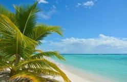 Tropische strandachtergrond Stock Fotografie