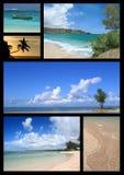 Tropische strandcollage Stock Afbeeldingen